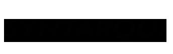 logo_syntarqui